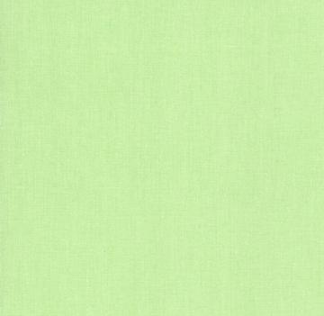 Бумага Colorplan А4 270г/м2 Светло-зеленый (2 листа)