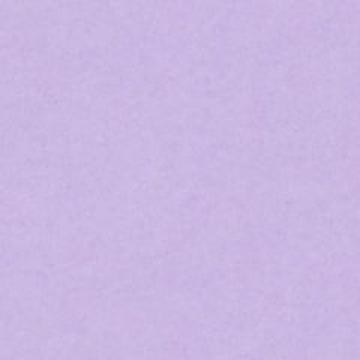 Бумага Colorplan А4 270г/м2 Сиреневый (2 листа)
