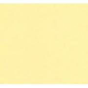Бумага Burano пастель А4 250г/м2 Чайная роза (2листа)