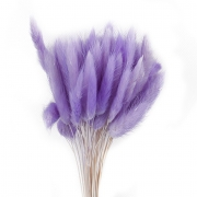 Лагурус 30 шт. (фиолетовый)