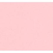 Бумага Burano пастель А4 250г/м2 Светло-розовый (2листа)