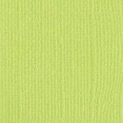 Кардсток Зеленое яблоко 30х30см (2 листа)