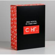 Коробка складная «С НГ», 22×30×10 см