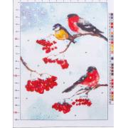 Канва для вышивания с рисунком «Снегири», 28х37 см