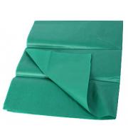 Тишью бумага 50х66см Зеленый (2 листа)