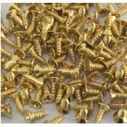 Шуруп для шкатулок 2.5*8мм золото (20 шт.)