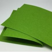 Фетр Корея FKS12-33/53 жесткий 33х53 см 1.2 мм светло-зеленый