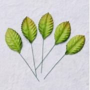 Листочки роз 2.5см (10 шт.)