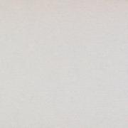Бумага Burano пастель А4 250г/м2 Светло-серый (2листа)