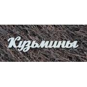 Фамилия на заказ 50см шрифт Arctika