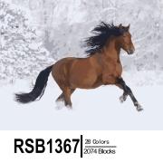 Набор RSB1367 40х50см