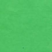 Калька Zanders А4 100г/м2 Зеленая лагуна (2 листа)