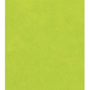 Фетр Китай жесткий 20х30 см 1мм Салатовый