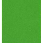 Фетр Китай жесткий 20х30 см 1мм Зеленый