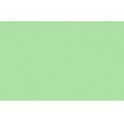 Бумага Burano пастель А4 140г/м2 Светло-зеленый (2листа)