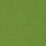 Кардсток PST Оливковый венок 30х30см (2 листа)