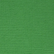 Кардсток PST Лесной папоротник 30х30см (2 листа)