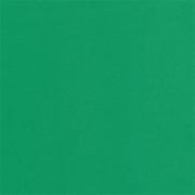 Фоамиран 1 мм 50х50 см Зеленый (Китай)