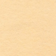 Фетр Китай мягкий FKC 20х30 см 1мм светло-бежевый ch661 (2 листа)