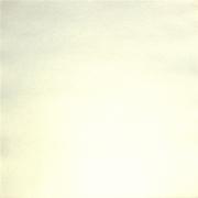 Бумага для скрапбукинга pstm 250 г/м2 30.5x30.5 см, Белый 01 (1 лист)
