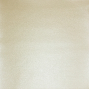 Бумага для скрапбукинга pstm 250 г/м2 30.5x30.5 см,. 02 Шампань (1лист)