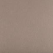 Фетр Корея FKS12-33/53 жесткий 33х53 см 1.2 мм бежево-серый 893