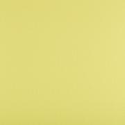 Фетр Корея FKS12-33/53 жесткий 33х53 см 1.2 мм св.желтый 818