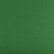 Фетр Корея FKS12-33/53 жесткий 33х53 см 1.2 мм зеленый 867