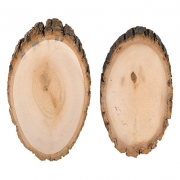 Срез (спил) дерева СРЕЗ-03 20х10см (1 шт.)